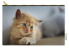 Cute Orange Kitty Carry-all Pouch