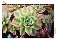 Carry-all Pouch featuring the photograph Cute Succulent by Top Wallpapers