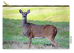 Carry-all Pouch featuring the photograph Deer Standing In A Field by Angela Murdock