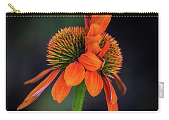 Carry-all Pouch featuring the photograph Double Your Pleasure by Dale Kincaid