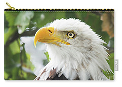 Bald Eagle Perched In A Tree Carry-all Pouch