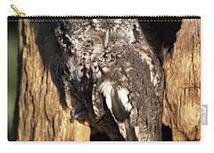 Carry-all Pouch featuring the photograph Eastern Screech Owl 92515 by Rick Veldman