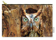Eastern Screech Owl Perched In A Hole In A Tree Carry-all Pouch