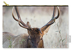 Elk Portrait Carry-all Pouch