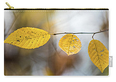 Carry-all Pouch featuring the photograph Fall In Triplicate by Michael Arend