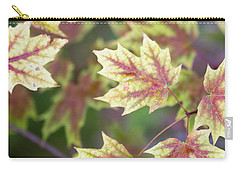 Fall Red And Yellow Leaves 10081501 Carry-all Pouch