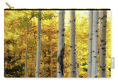 Carry-all Pouch featuring the photograph Fall's Visitation by Rick Furmanek