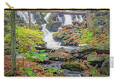Carry-all Pouch featuring the photograph Fern Falls by Bill Wakeley