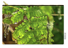 Carry-all Pouch featuring the photograph Fernsickle by Meta Gatschenberger