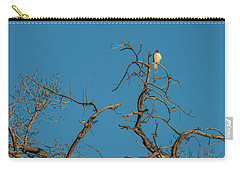 Carry-all Pouch featuring the photograph Ferrunginous Hawk In Tree by Jon Burch Photography