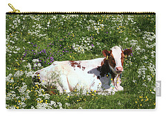 Carry-all Pouch featuring the photograph Field Day by PJ Boylan