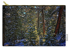 Carry-all Pouch featuring the photograph Forest Shadows by Dan Miller