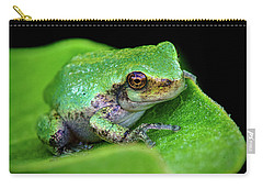 Frogie Carry-all Pouch