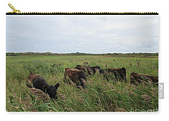 Galloway Cows On Texel North Holland Carry-all Pouch