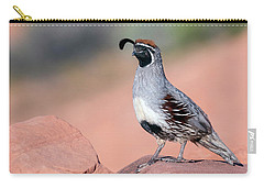 Gambels Quail Two Carry-all Pouch