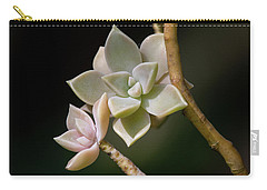 Carry-all Pouch featuring the photograph Ghost Plant by Dale Kincaid