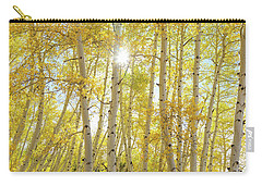 Carry-all Pouch featuring the photograph Golden Sunshine On An Autumn Day by James BO Insogna