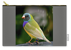 Carry-all Pouch featuring the photograph Gouldian Finch? #2 by PJ Boylan