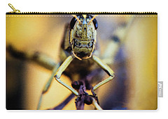 Carry-all Pouch featuring the photograph Grasshopper by Jon Burch Photography