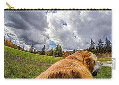 Carry-all Pouch featuring the photograph Grayson Highlands Color By Jackson by Matthew Irvin