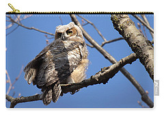 Carry-all Pouch featuring the photograph Great Horned Owlet 42915 by Rick Veldman