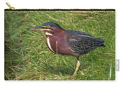 Carry-all Pouch featuring the photograph Green Heron Up Close by Ricky L Jones