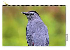 Grey Catbird Carry-all Pouch