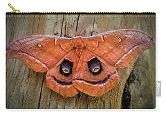 Halloween Moth Carry-all Pouch