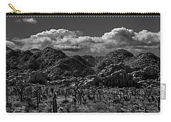 Hidden Valley Carry-all Pouch