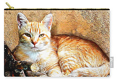 Hogarty The Ginger Cat Carry-all Pouch