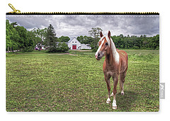 Horse In Pasture Carry-all Pouch