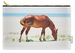 Horse On Beach Carry-all Pouch