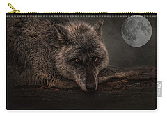 Its A Lonely Night  Carry-all Pouch
