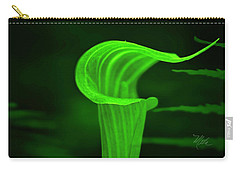Carry-all Pouch featuring the photograph Jack And Fern by Meta Gatschenberger