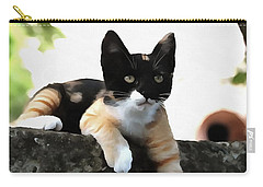 Just Chillin Tricolor Cat Carry-all Pouch