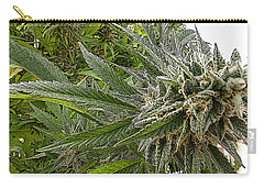 Carry-all Pouch featuring the photograph Larry Og #3 by Ahma's Garden