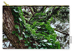 Carry-all Pouch featuring the photograph Leafy Tree Trunk by Lukas Miller