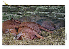 Carry-all Pouch featuring the photograph Let Sleeping Pigs Lie by PJ Boylan