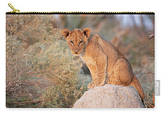 Carry-all Pouch featuring the photograph Lion Cub On Termite Hill by John Rodrigues