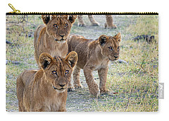 Carry-all Pouch featuring the photograph Lion Cubs On The Trail by John Rodrigues