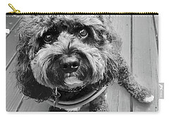 Little Charliedog  Carry-all Pouch