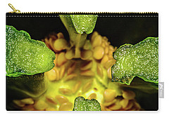 Looking Into A Pepper Carry-all Pouch