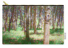 Carry-all Pouch featuring the photograph Lost In The Woods - Kenosha Pass, Colorado by Mike Braun