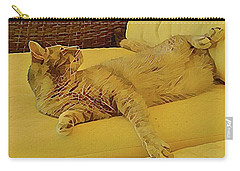Lounging Around Carry-all Pouch