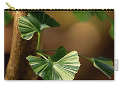 Carry-all Pouch featuring the photograph Maidenhair Tree by Dale Kincaid