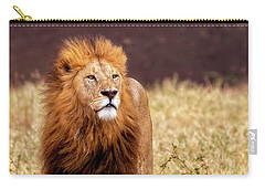 Carry-all Pouch featuring the photograph Majesty by Kay Brewer