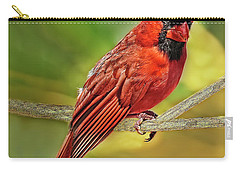 Male Cardinal Headshot  Carry-all Pouch