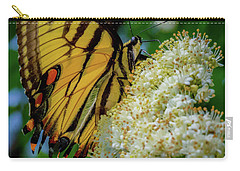 Manassas Butterfly Carry-all Pouch