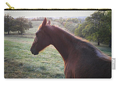 Carry-all Pouch featuring the photograph Misty by Carl Young
