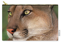 Carry-all Pouch featuring the photograph Mountain Lion Portrait Wildlife Rescue by Dave Welling